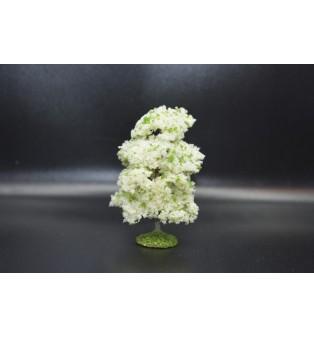 Jabloň - kvitnúca (8,0cm)